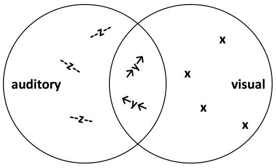 Visual summary of Ihde's diagrams